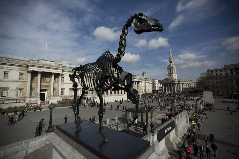 "The sculpture ""Gift Horse"", which portrays a skeletal horse by German-born artist Hans Haacke, stands above Trafalgar Square after it was unveiled as the new commission for the Fourth Plinth, in London, Thursday, March 5, 2015. The 4.6 meter high bronze sculpture has an electronic ribbon attached to its front leg displaying a live ticker of the London Stock Exchange. (AP Photo/Matt Dunham)"