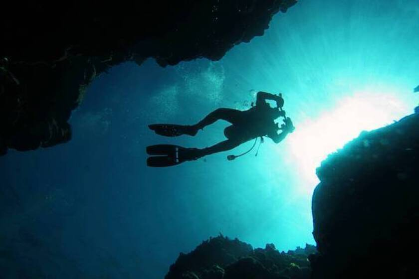 A diver explores Discovery Bay in Jamaica. Scientists have devised a new ocean health index that measures 10 ways that people benefit from the oceans.