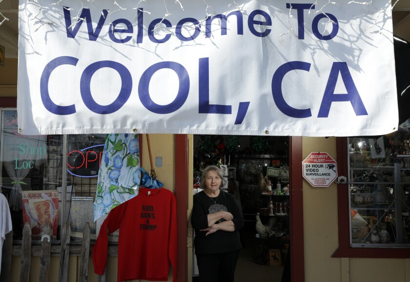 Rosie Borba, who owns Cool Florist and Gifts in Cool, Calif., is worried that a Dollar General store proposed for a lot across the street could put her out of business.
