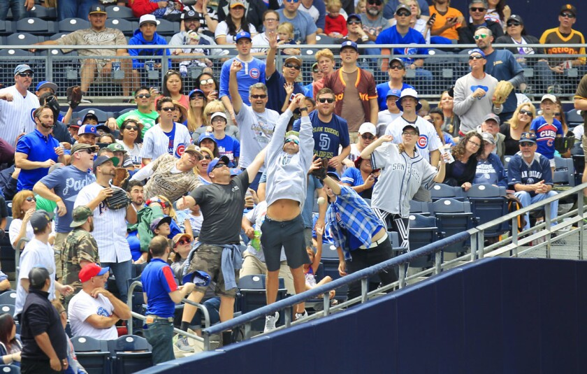 Fans try to catch a foul ball during a San Diego Padres against the Chicago Cubs at Petco Park on May 29, 2017. (K.C. Alfred/Union-Tribune)