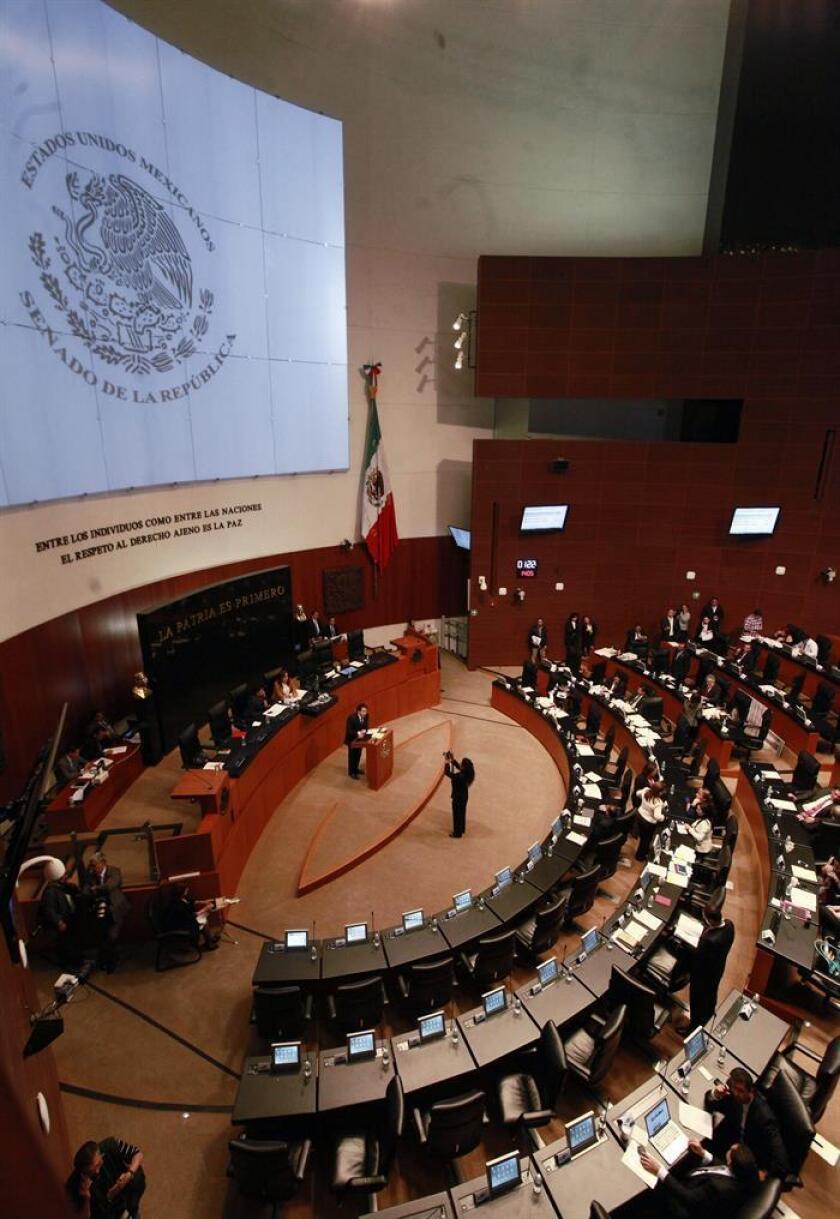 Vista de una sesión en la Cámara de Senadores. EFE/Archivo