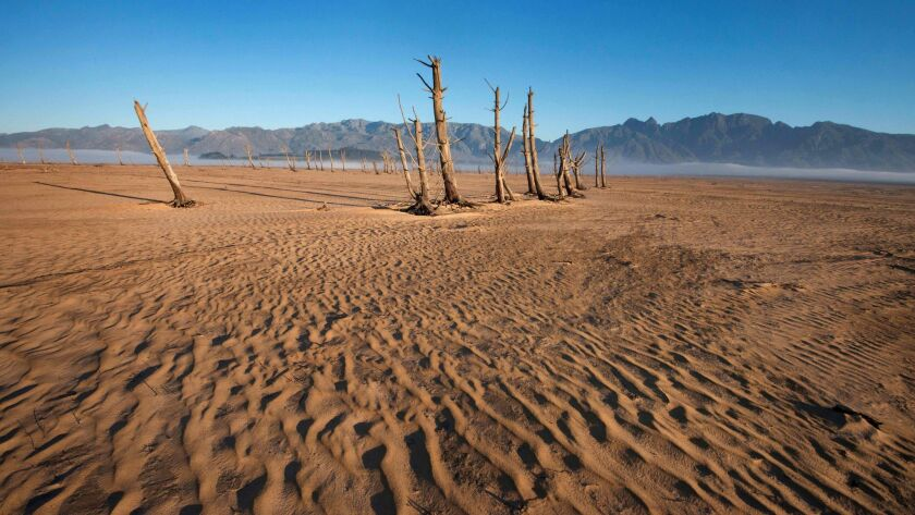 Bare sand and dried tree trunks stand out at Theewaterskloof Dam, which has less than 20% of its water capacity. The dam is the main water source for Cape Town, South Africa.