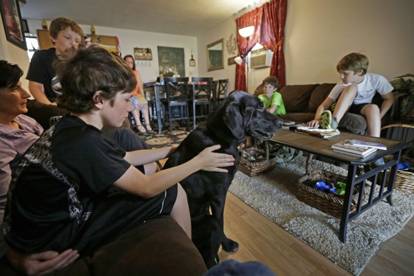 "In this Sept. 8, 2015 photo, Michelle Baker, left, sits with her sons, clockwise from foreground left, Mason, Kobi, Jack, and Nick, and Honor, the PTSD service dog of her late husband, Wade, at their home in Clyde, N.C. ""Honor gave the boys their dad for more years,"" she says. ""And that's an amazing gift."" (AP Photo/Chuck Burton)"