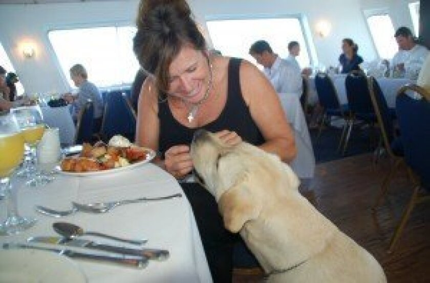 Treats abound for pets and their owners on the Bow Wow Brunch Cruise from Hornblower, which benefits the Helen Woodward Animal Center in Rancho Santa Fe.