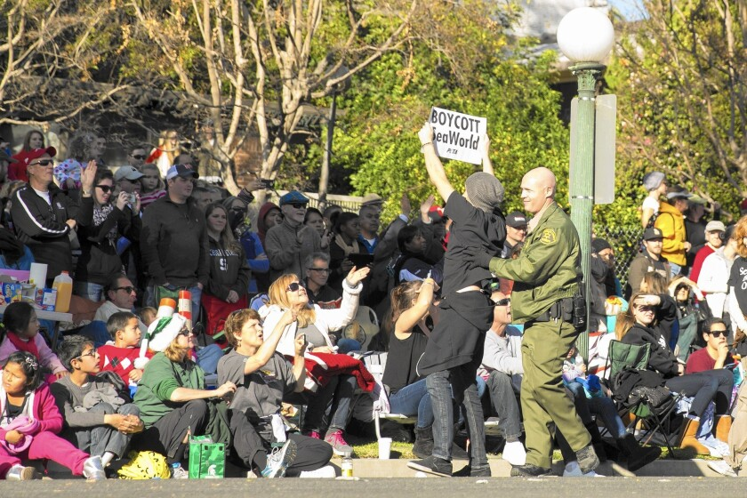 """A PETA activist is arrested as he protests against the SeaWorld float, """"Sea of Surprises,"""" at the 125th Rose Parade in Pasadena on Jan. 1, 2014."""