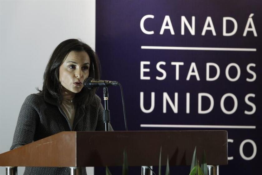 La presidenta de la Comisión Federal de Competencia Económica de México, Alejandra Palacios, habla durante una conferencia de prensa. EFE/Archivo