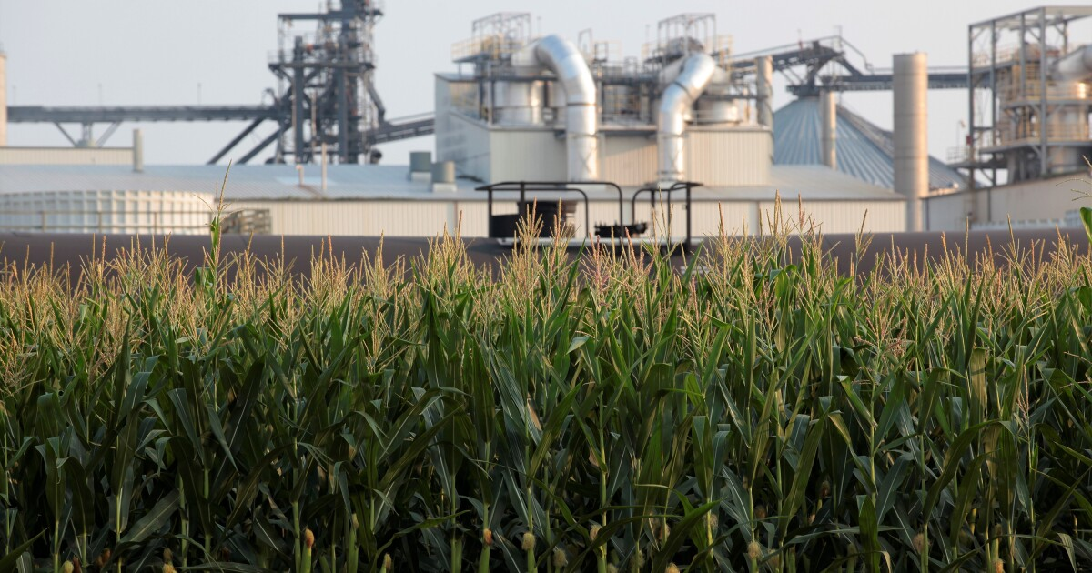Carbon-capture pipelines offer climate aid; activists are wary