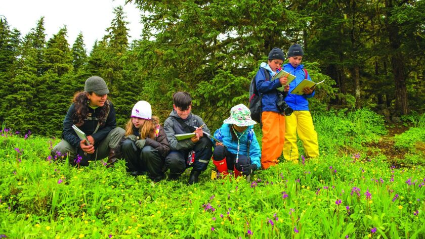 Kids work on identifying plants for their field notebooks in southeast Alaska on a Lindblad Expeditions-National Geographic cruise.