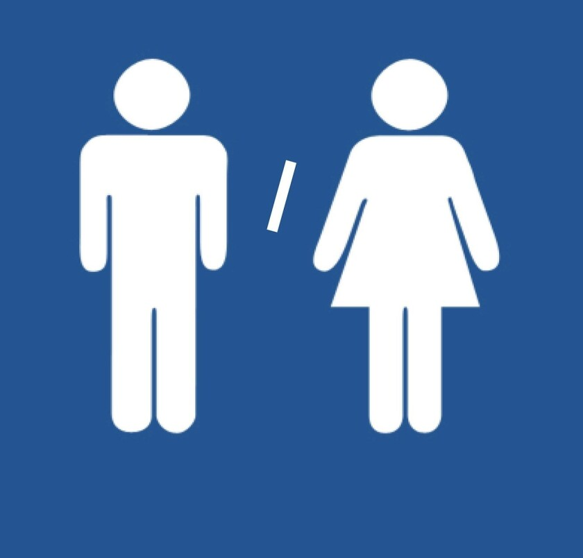 Gender Protections