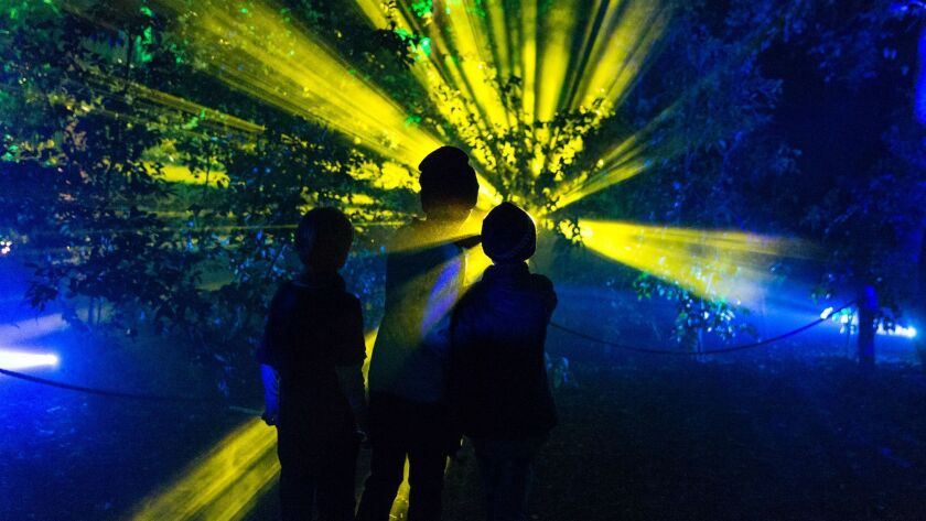 Descanso Gardens' Enchanted: Forest of Light is a one-mile stroll through illuminated walkways, twin