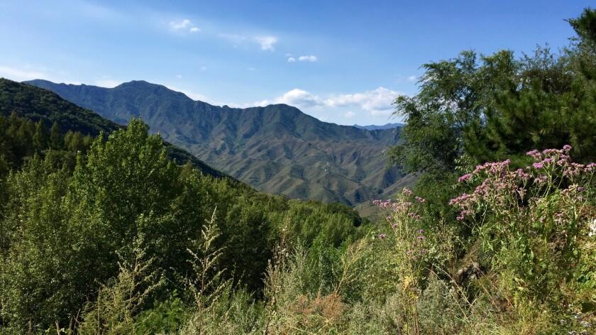 Baihuashan National Nature Reserve, west of Beijing.
