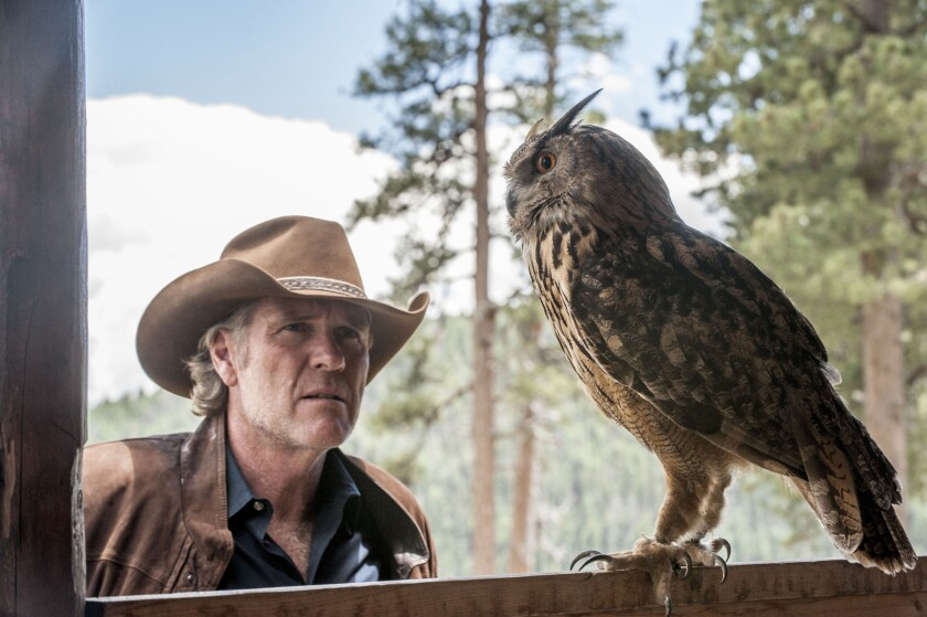 """Robert Taylor in a scene from """"Longmire,"""" a popular show among older viewers that has been canceled."""