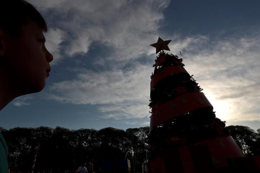 Un niño observa un gran árbol de Navidad. EFE/Archivo