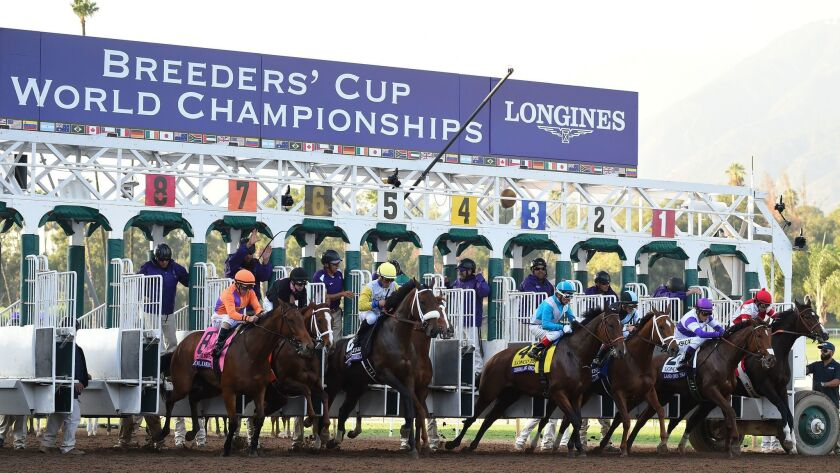 Race 9 roars to life Friday during the 2016 Breeders' Cup Championships at Santa Anita Park in Arcadia, Calif.