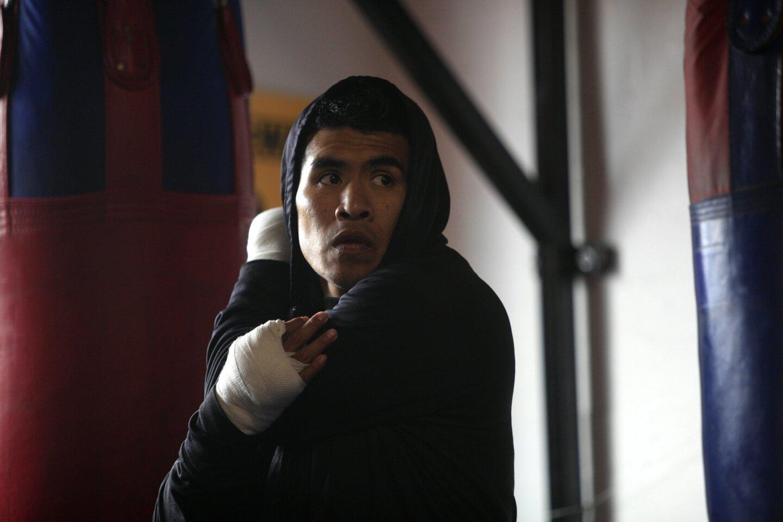 Boxers prepare for Fight Night