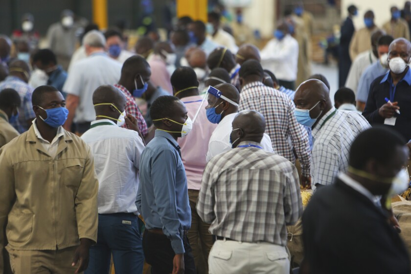 Tobacco auctioneers and officials wear face masks to protect against COVID-19 in Harare, Zimbabwe, in April.