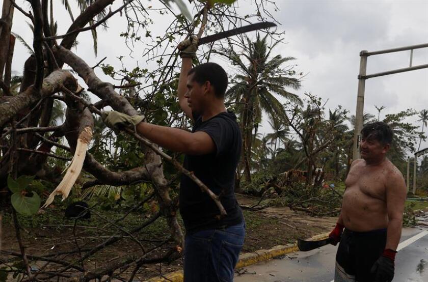 Unos ciudadanos limpian las carreteras de árboles caídos por el paso del huracán María. EFE/Archivo