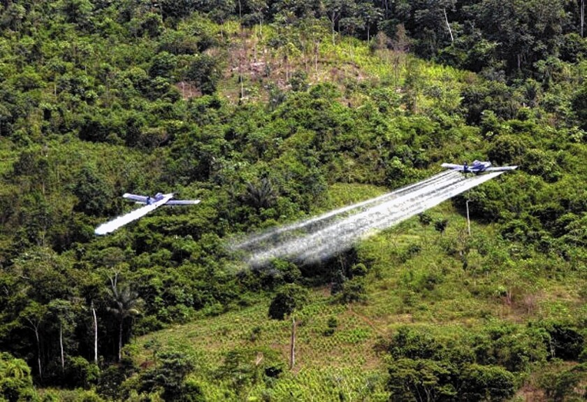 Crop-dusters conduct coca eradication spraying in Colombia.