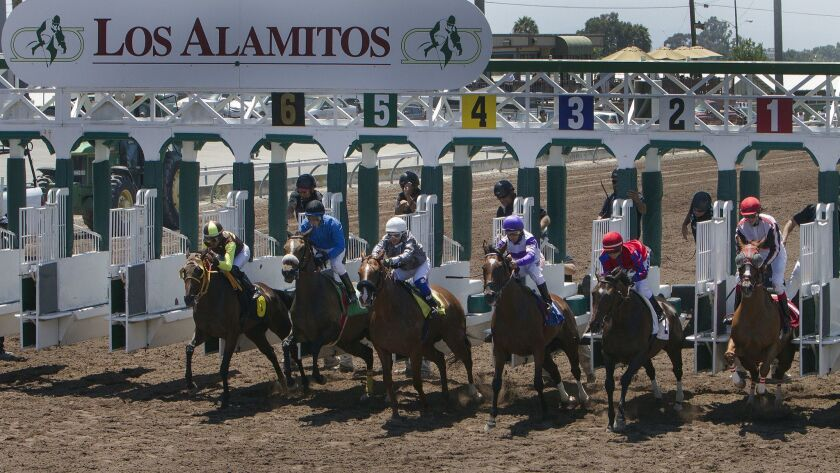 LOS ALAMITOS, CA - JULY 3, 2014: Thoroughbred horses bolt out of the starting gate in the first race