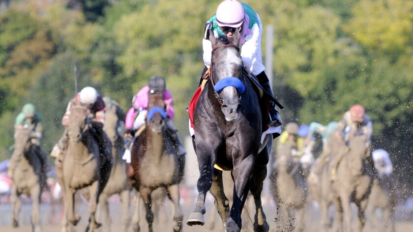 Arrogate, with Mike Smith aboard, won the Travers Stakes in 2016.