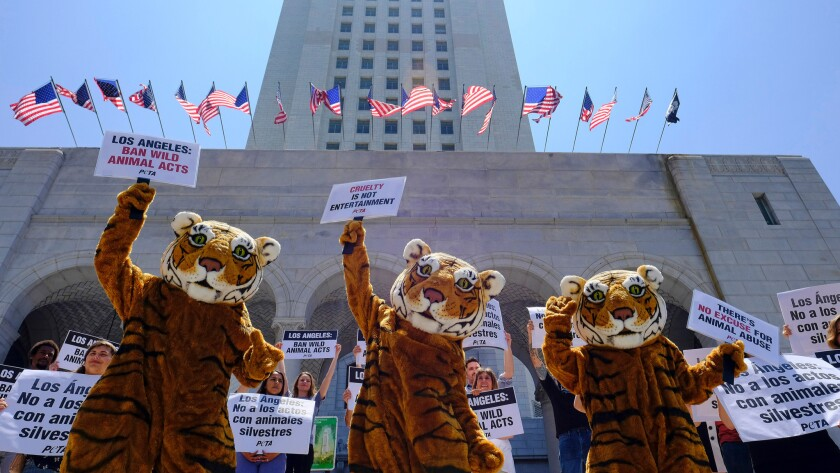 People for the Ethical Treatment of Animals protest at Los Angeles City Hall