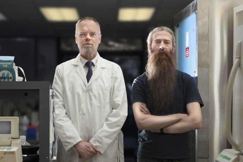 "Aubrey de Gray and Bill Andrews in the film ""The Immortalists,"" directed by David Alvarado and Jason Sussberg."
