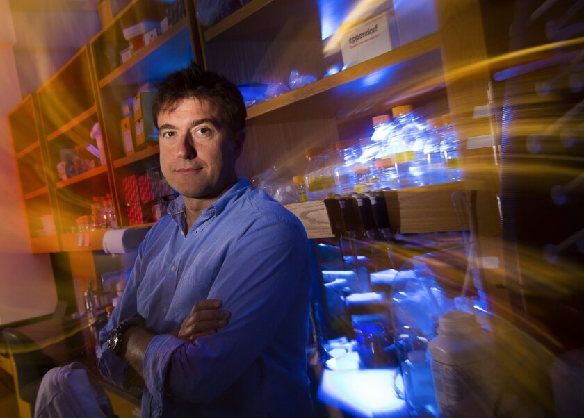 Eros Lazzerini Denchi, a scientist at The Scripps Research Institute is senior author of a study that found a particular genetic mutation in several human cancers that promotes the growth of aggressive tumors.