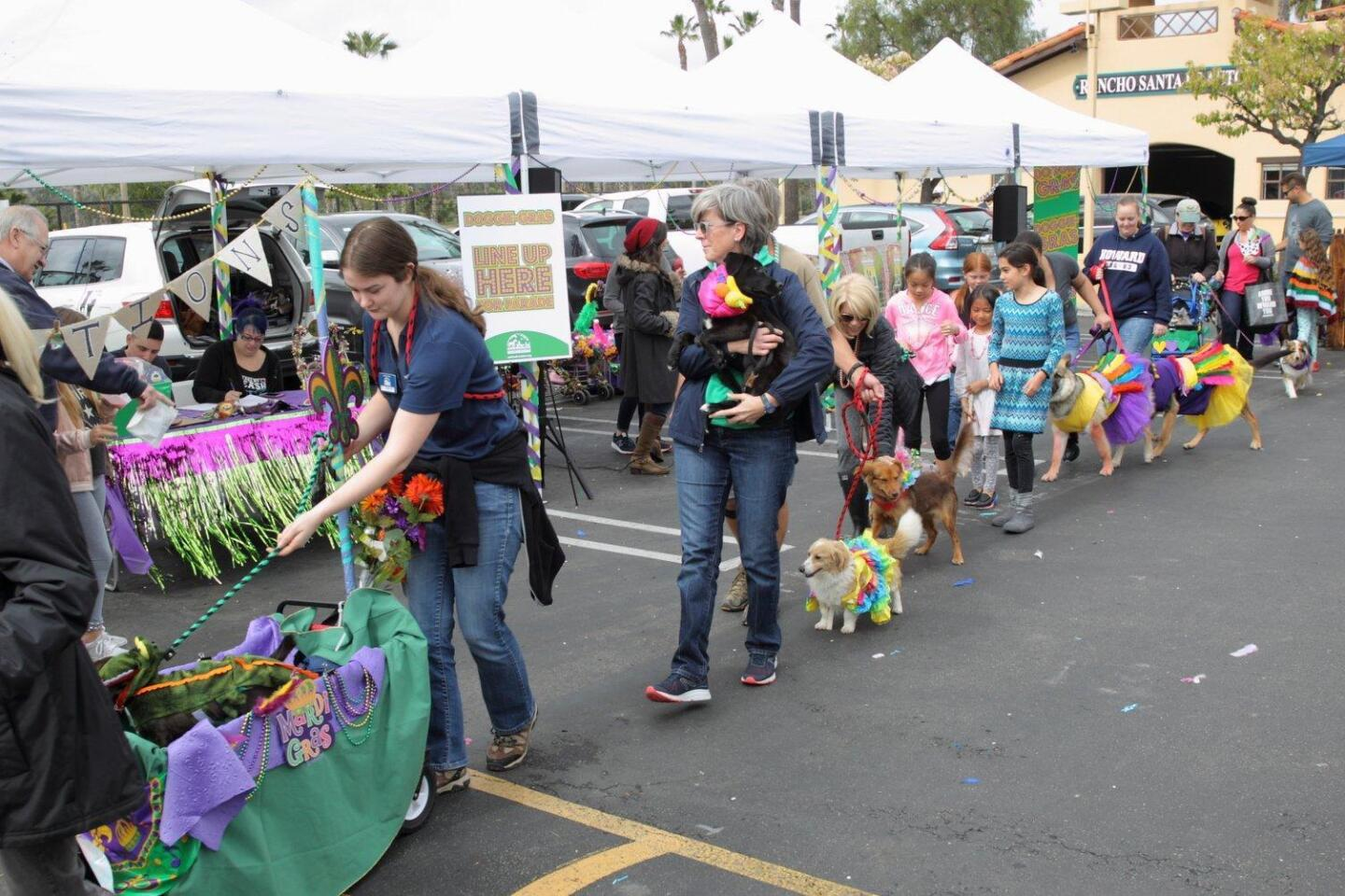 Helen Woodward Animal Center hosts a Mardi Gras parade