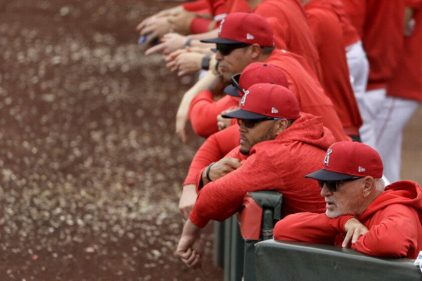 Angels manager Joe Maddon, front right, watches with his players during an exhibition game against the Texas Rangers on Feb. 28.
