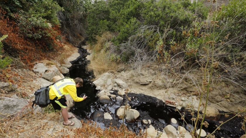 VENTURE, CA JUNE 23, 2016 -- Gabriel Anderson,13, photographs oil spill as seen behind a home in Ve