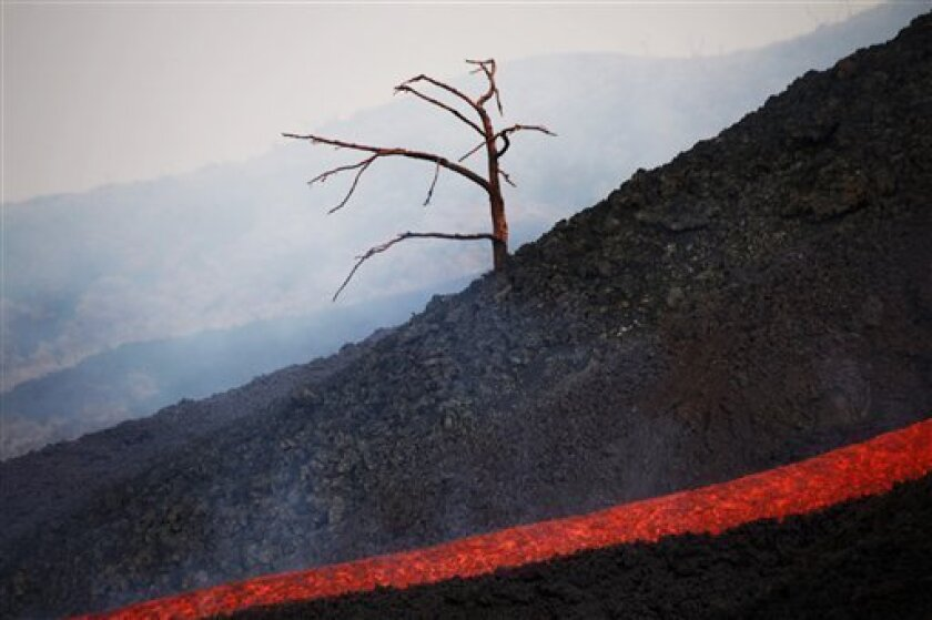 A burnt tree stands near a river of lava at the erupting Pacaya volcano in Villa Canales, 50 kms south of Guatemala City, Saturday, June 5, 2010. The Pacaya volcano started erupting lava and rocks last May 27, forcing thousands of people to flee their homes and disrupting air traffic as ash drifted
