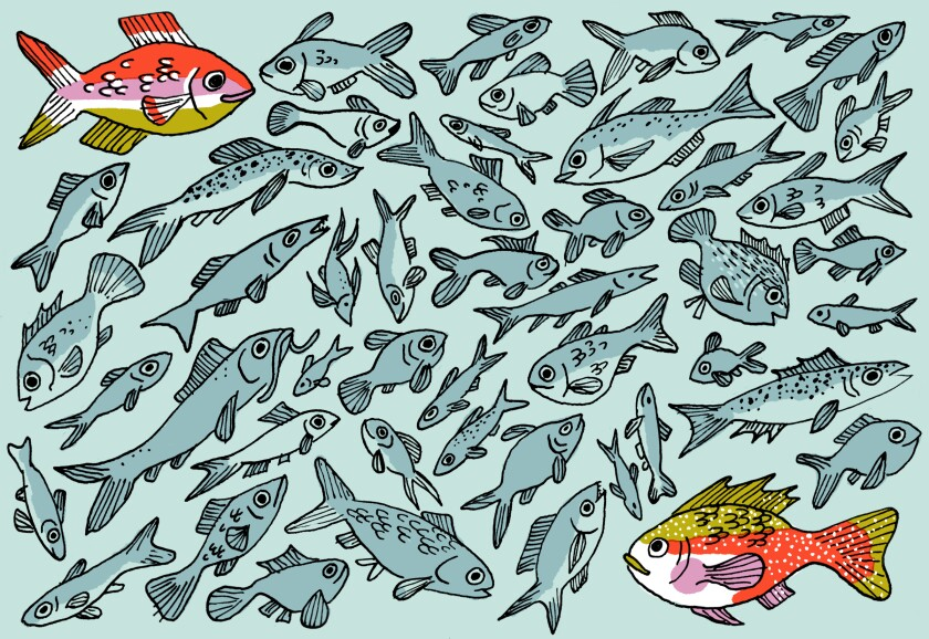 I knew there were a lot of fish in the sea: I went on 46 blind dates.
