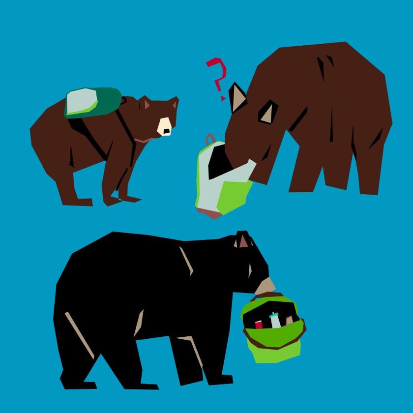 Bears picking through campers' backpacks