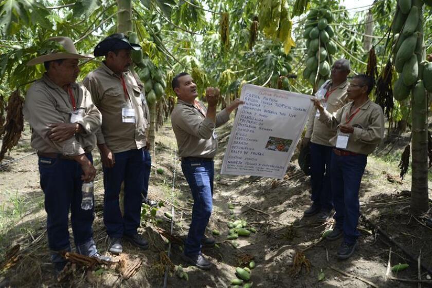 ONU pone proyecto colombiano como ejemplo de contribución empresas a la paz