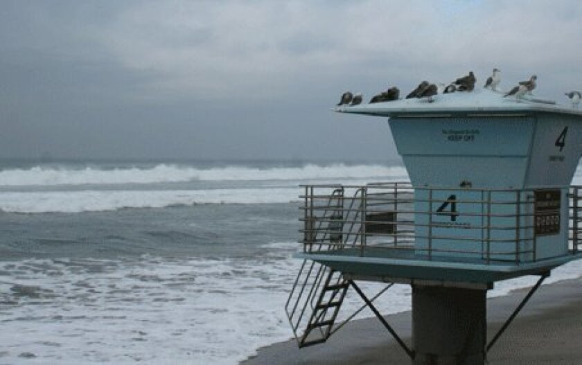 A new study looks at possible future impacts of rising sea levels on Torrey Pines beach. Photo: Light File