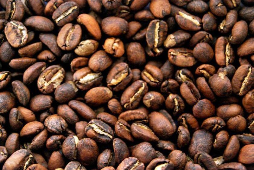 Fotografía que muestra granos de café recién tostados. EFE/Archivo