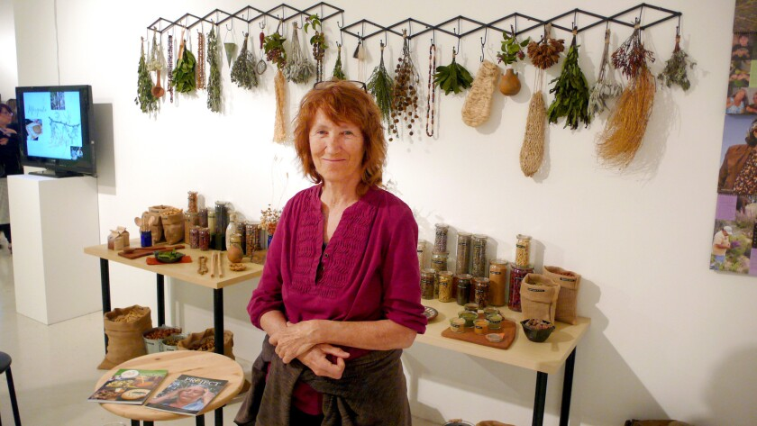 Debra Small with her exhibit of medical plants used on both sides of the border by Native Americans