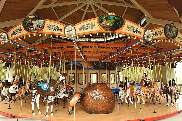 A dung beetle chariot is one of the features of the Los Angeles Zoo's Tom Mankiewicz Conservation Carousel, which will open to the public Oct. 27. See full story