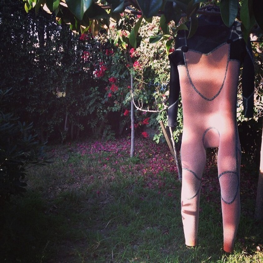 A wetsuit hangs off a tree in the sunlight, framed against some bougainvillea plants.