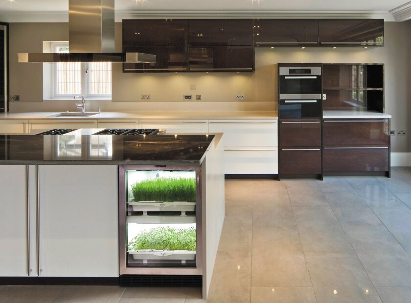 The Urban Cultivator allows you to grow greens in your kitchen.