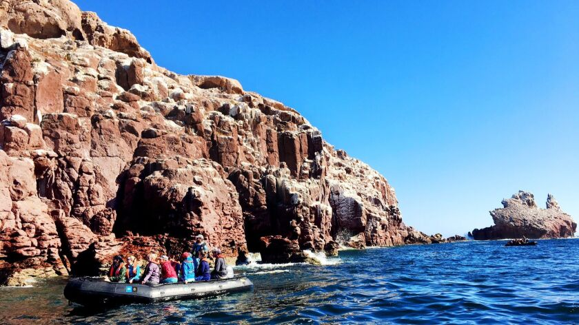 Cruise participants take an excursion in an inflatable to get a better view of Los Islotes, an island in the Gulf of California where visitors can swim with sea lions when the weather is good.