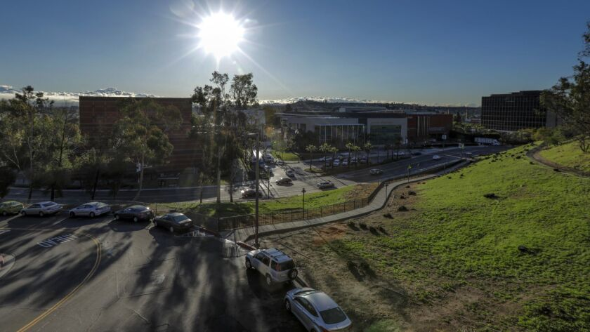 Campus police shot at a coyote who bit a 5-year-old boy at California State University, Los Angeles on Wednesday night.