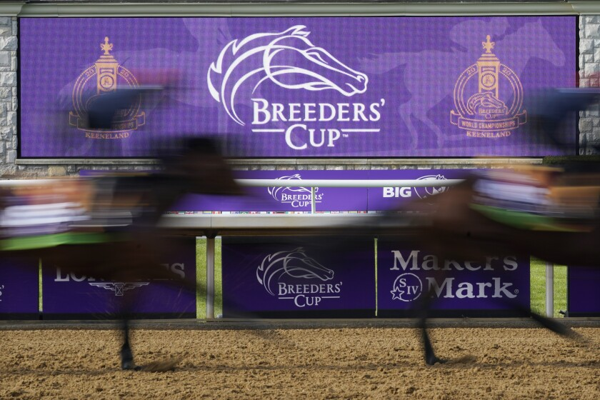 Horses pass a video board during a workout for the Breeders' Cup on Nov. 5 at Keeneland Race Course in Lexington, Ky.