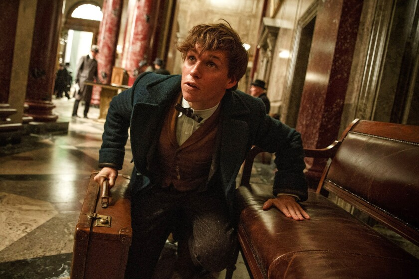 """Eddie Redmayne plays Newt Scamander in """"Fantastic Beasts and Where to Find Them,"""" in theaters Nov. 18."""