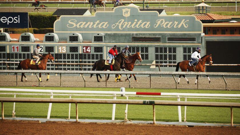 Exercise riders and horses walk along the track during morning workouts at Santa Anita Park in Arcadia.