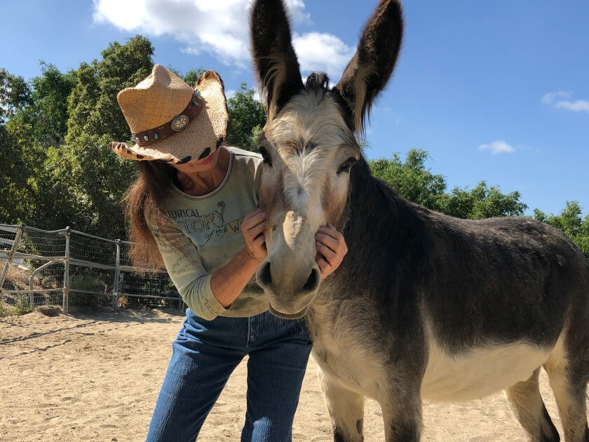 Celia Sciacca, pictured with one of two donkeys she takes care of on her ranch, hopes to draw more local support for the animals at Laughing Pony.