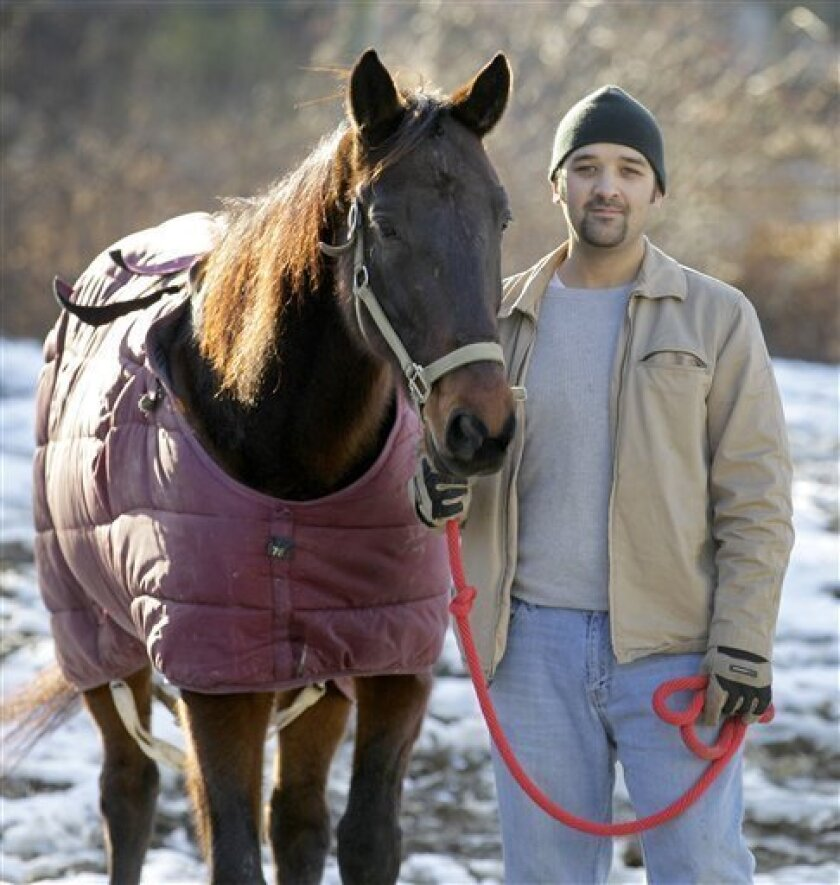Christian Courtwright, the Humane Officer of the Geauga County Humane Society's Rescue Village, stands with Wally, a 9-year-old standard bred horse, at the animal shelter in South Russell, Ohio on Saturday, Jan. 7, 2012. After being tied to a buggy rail overnight outside the Walmart store in Middlefield, Ohio in November when his Amish owner decided to go out on the town, Walmart employees called local police and tended to the horse for the weekend until Rescue Village was called in to shelter the horse. Court action this week put Wally in the permanent custody of the animal shelter, and he will soon be up for adoption to a new home. (AP Photo/Amy Sancetta)