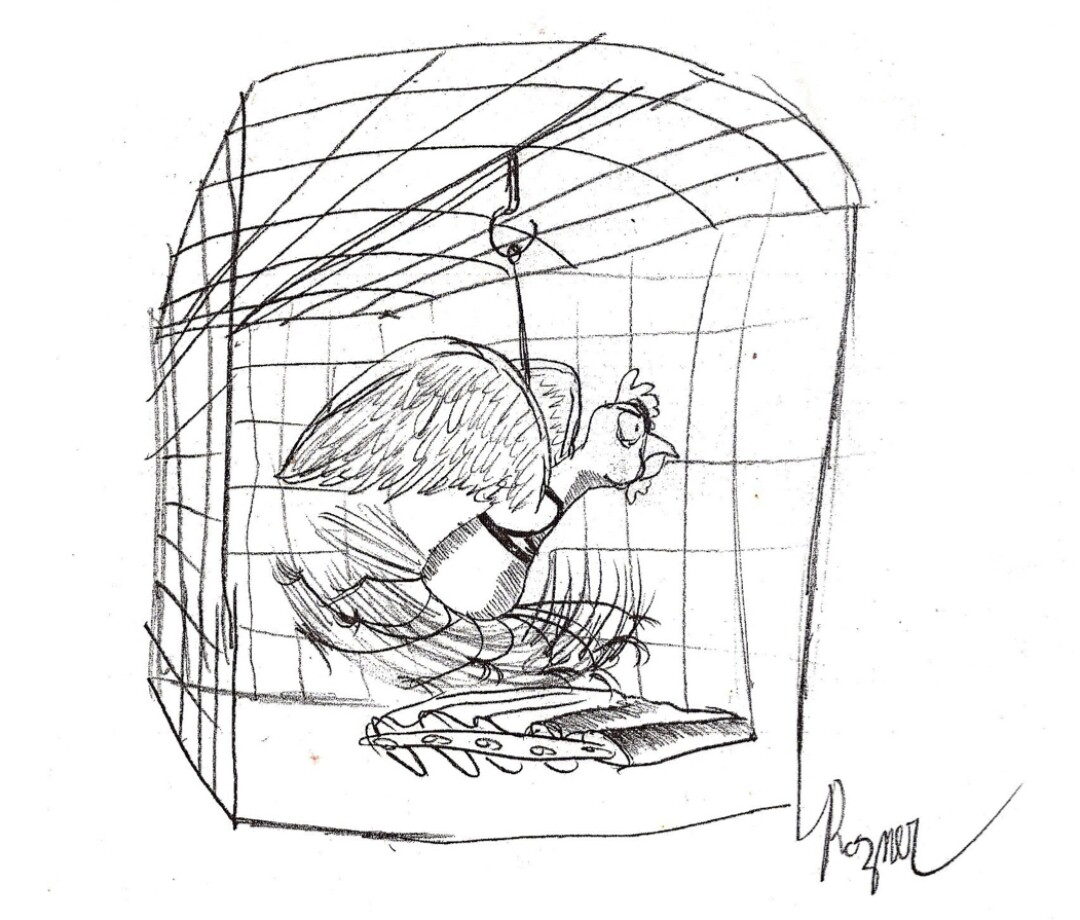 A black and white drawing of a bird sprinting on treadmill rollers in a cage