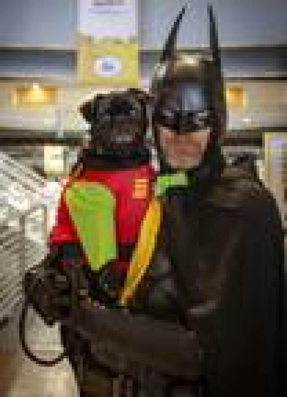 PAWmicon pet superhero costume contest. Helen Woodward Animal Ctr