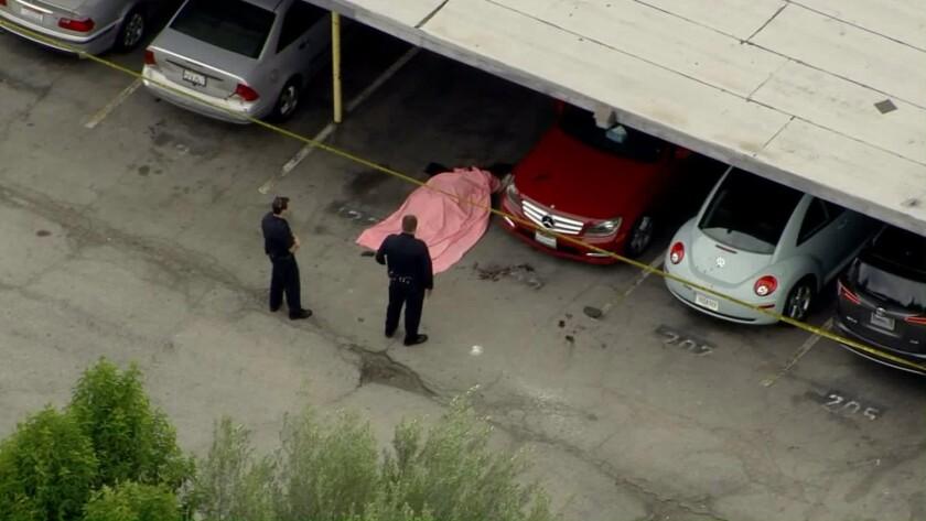 Man with gunshot wounds crashes his car and dies in Tarzana carport